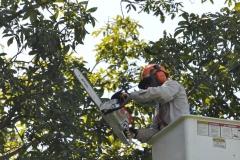 emergency-response-contractors