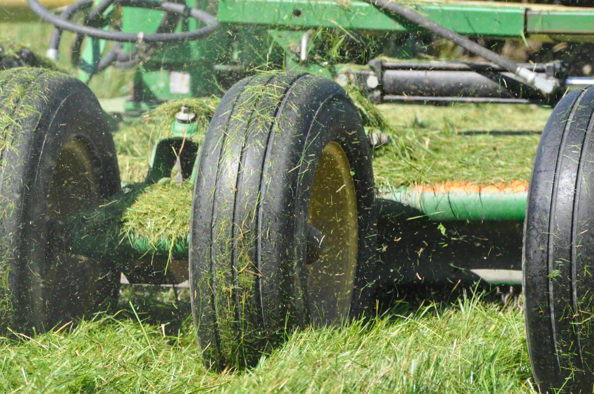 lawn-mowing-large-site-maintenance