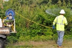 vegetation-management-contractor